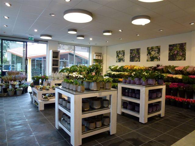Beest Bloemen en Planten